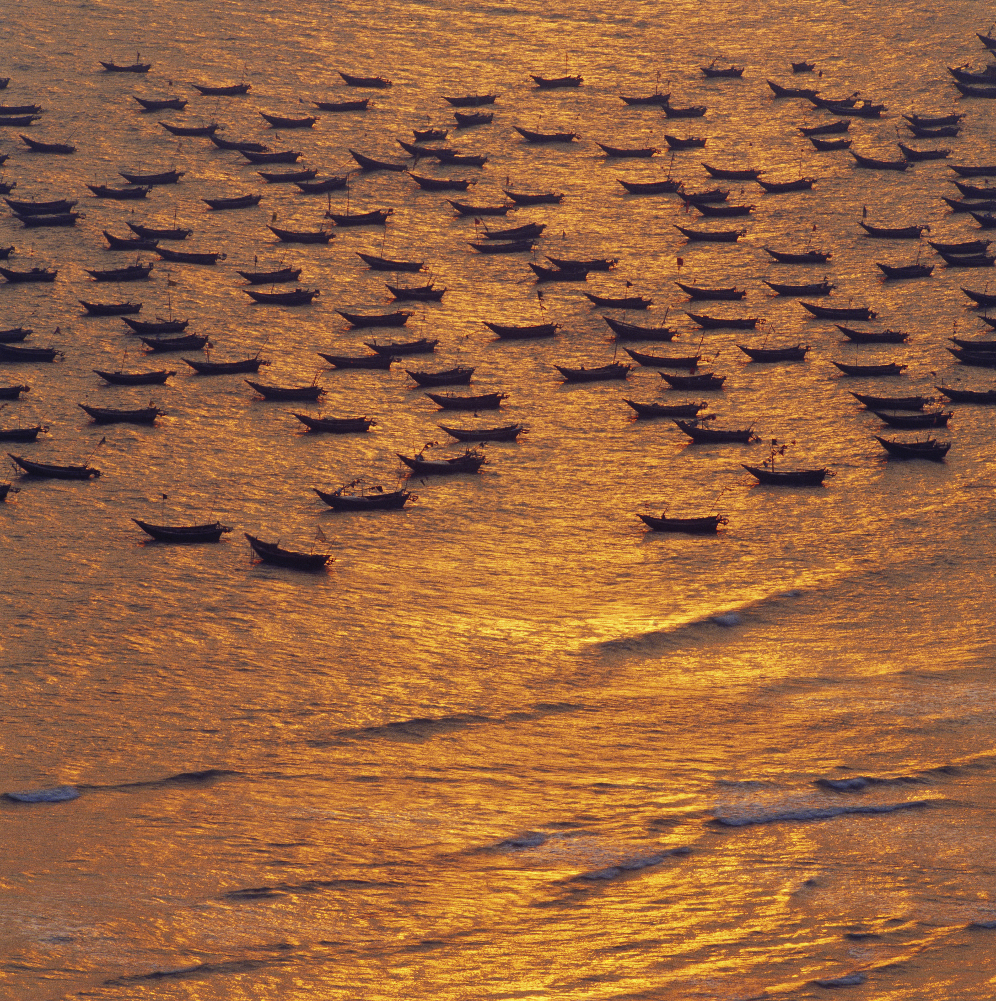 Hundreds of boats on the water at sunset, Shuidong Harbour, Diangbai County, Maoming City, Guangdong